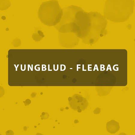 دانلود آهنگ fleabag از YUNGBLUD