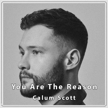 دانلود آهنگ You Are The Reason از Calum Scott